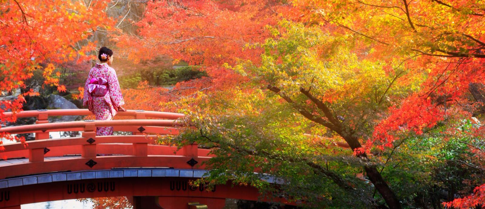 GUIA TROTAMUNDOS JAPON EPUB DOWNLOAD